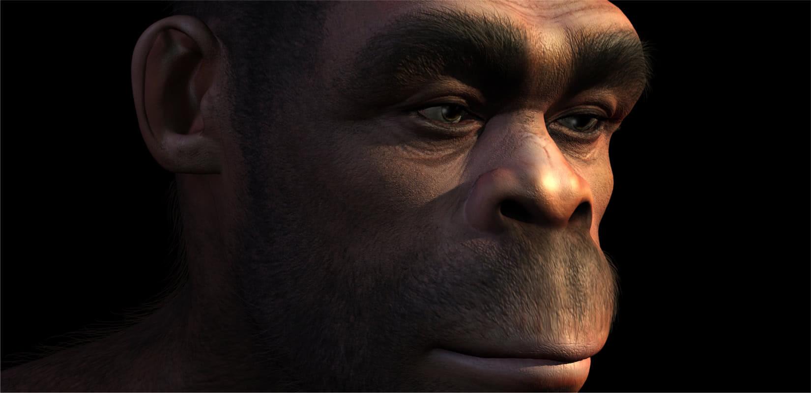 Evolucija čovjeka